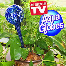 review of aqua globes will they really water your plants for you
