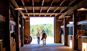 Loafing Shed Plans Horse Shelter by Design Your Horse U0027s Stable And Stalls