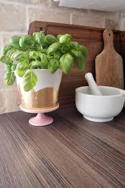 herb planter diy diy gold u0026 silver foil herb planters