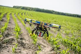 Plants That Need Low Light Six Ways Drones Are Revolutionizing Agriculture Mit Technology