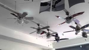 Designer Ceiling Fans by Designer Ceiling Fans On Display Youtube