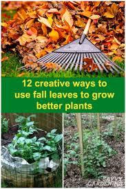361 best garden advice u0026 tips images on pinterest garden ideas