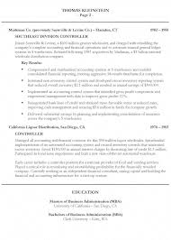 It Executive Resume Samples by Chief Executive Officer Resume Example