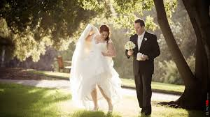 Botanic Gardens Hobart Hobart Wedding Photographer