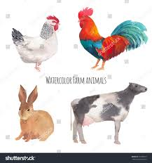 watercolor farm animals hand drawn vector stock vector 272589515