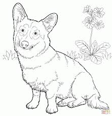 corgi coloring pages free coloring book 7146