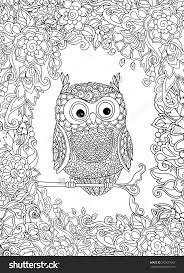 127 best eulen images on pinterest coloring books mandalas and
