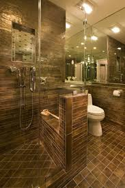 Designer Showers Bathrooms 275 Best House Shower Ideas Images On Pinterest Bathroom Ideas