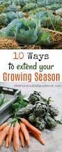 10 ways to extend your growing season gardens fruit garden and