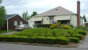 Front Porch Landscaping Ideas Wrap Around Front Porch Landscaping Ideas Bonaandkolb Porch Ideas