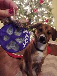 diy salt dough paw print ornament live life active fitness blog