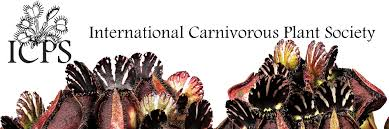 north american native plant society international carnivorous plant society icps