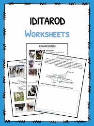 the iditarod 2018 facts worksheets u0026 historical information for kids