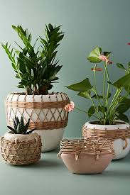 cute pots for plants planters plant stands pots for outdoors anthropologie