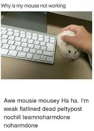 Not Working Meme - why is my mouse not working awe mousie mousey ha ha i m weak
