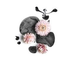 paweł bogumił floral sketches 21 2014 available for sale