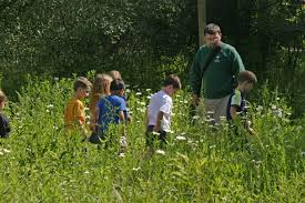 plant communities environmental nature center environmental education center activities for week of august 14