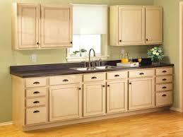 Kitchen Cabinet Designers Decoration Designers Kitchens Kitchen Cabinet Designs With Well