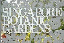 Singapore Botanic Gardens Mrt by Singapore Travel Guide Singapore Botanic Gardens