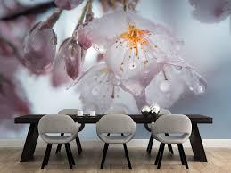 12 best garden wall mural ideas for living rooms bedrooms