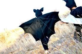 Umbrella Halloween Costume Homemade Animal Costumes