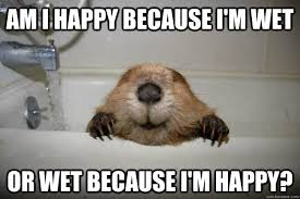 Be Happy Memes - am i happy because i m wet or wet because i m happy happy wet
