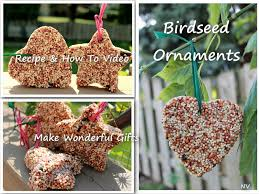 birdseed pic jpg