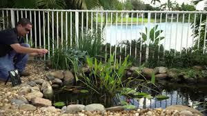 pond boss solar fountain pump kit youtube