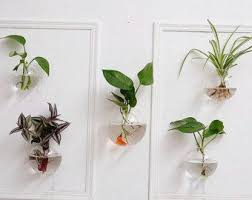Wall Hanging Planters by Best 25 Tv Wall Hangers Ideas On Pinterest Hanging Lanterns Tv