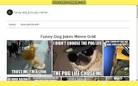 Dog Jokes Meme - dog jokes android apps on google play