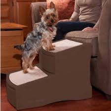 dog ramps u0026 stairs you u0027ll love wayfair ca