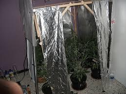 chambre de culture cannabis complete best box de culture maison contemporary antoniogarcia info