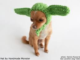 star wars dog halloween costumes the 25 best yoda dog costume ideas on pinterest pugs dog