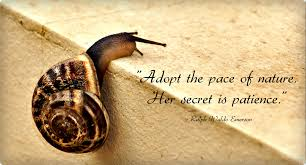 leadership quotes ralph waldo emerson adopt the pace of nature her secret is patience ralph waldo