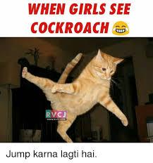 Flying Cockroach Meme - 25 best memes about cockroach cockroach memes