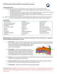Cell Transport Skills Worksheet Answers Homeostasis And Transport Worksheet Answers Chapter 7 7 4