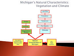 Michigan vegetaion images Vegetation forests vegetation orchards interpreting a chart jpg