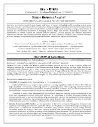 Business Objects Resume Sample by Reporting Analyst Resume Sample Free Resume Example And Writing