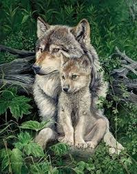tattoos wolves two wolves snuggling together wolf baby