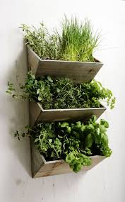 indoor herb garden wall anyone can make these 10 beautiful and useful diy accessories for a