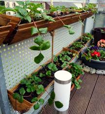 Hanging Planter Boxes container gardening diy strawberry planter easy and unexpensive