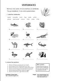 animal worksheet for kids free math worksheets