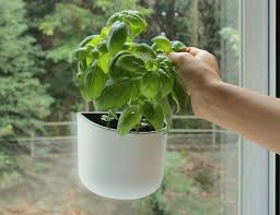 window planters indoor eden suction planter by okidome tile mirror planters and gardens