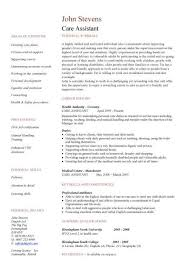 Sample Resume Curriculum Vitae by Care Assistant Cv Template Job Description Cv Example Resume