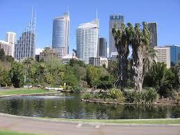 Botanic Garden Sydney File Sydney Royal Botanic Gardens 01 Jpg Wikimedia Commons