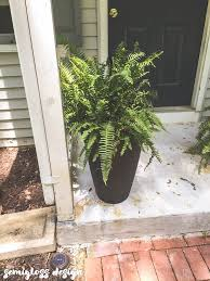 Cheap Tall Planters by How To Fill Tall Planters And Swap Plants Easily Semigloss Design