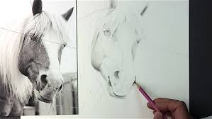 you u0027ll never think of drawing a horse the same way again u2026