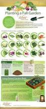 Decorative Vegetable Garden by 25 Best Vegetable Garden Layout Planner Ideas On Pinterest