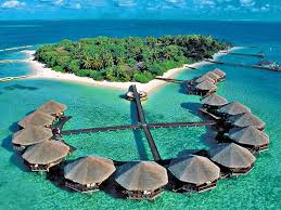 maldives resorts google search activity board pinterest
