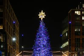 christmas trees and lights the wharf lights up its first christmas tree dc refined